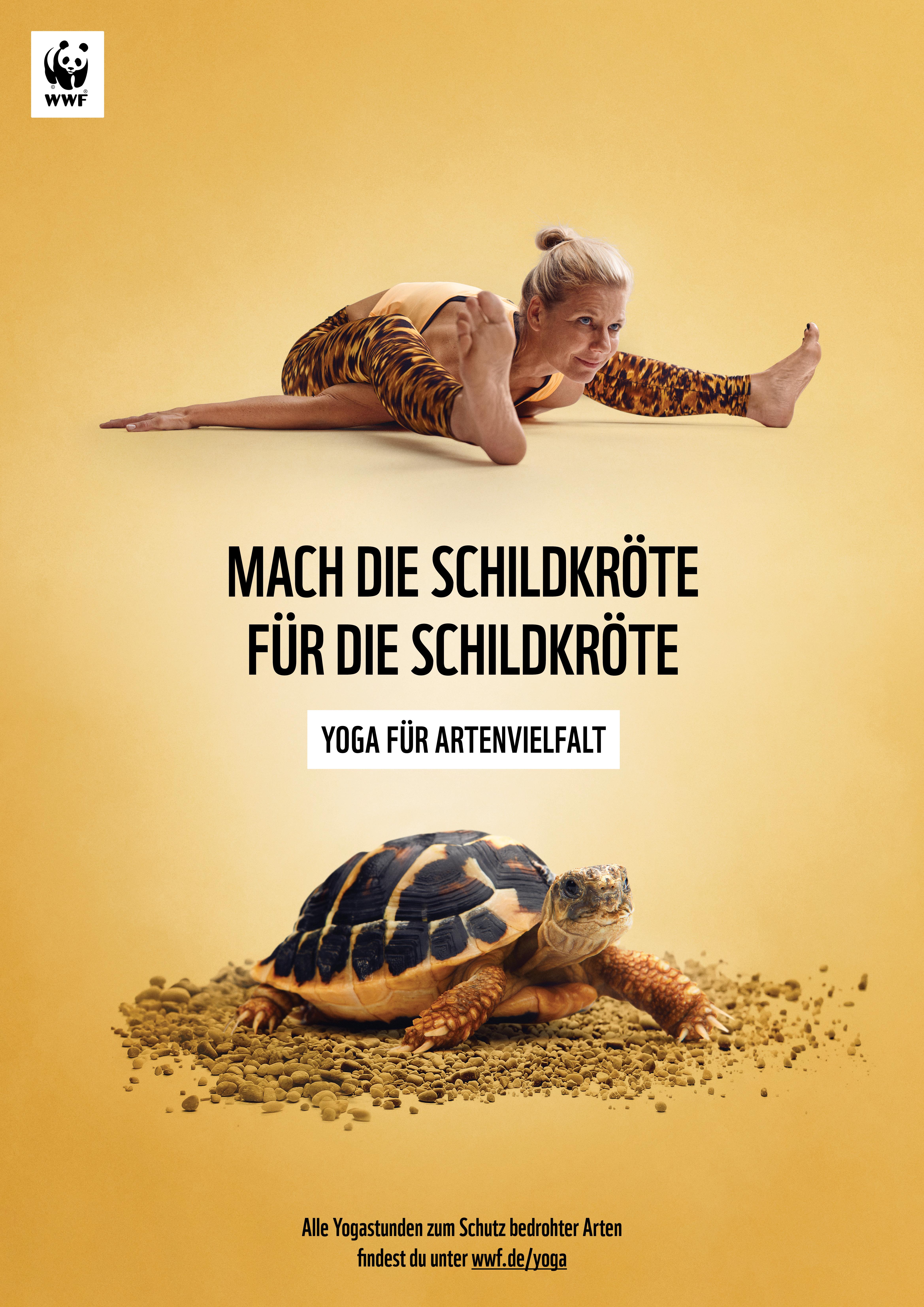 WWF Yoga für Artenvielfalt Griechische Landschildkröte