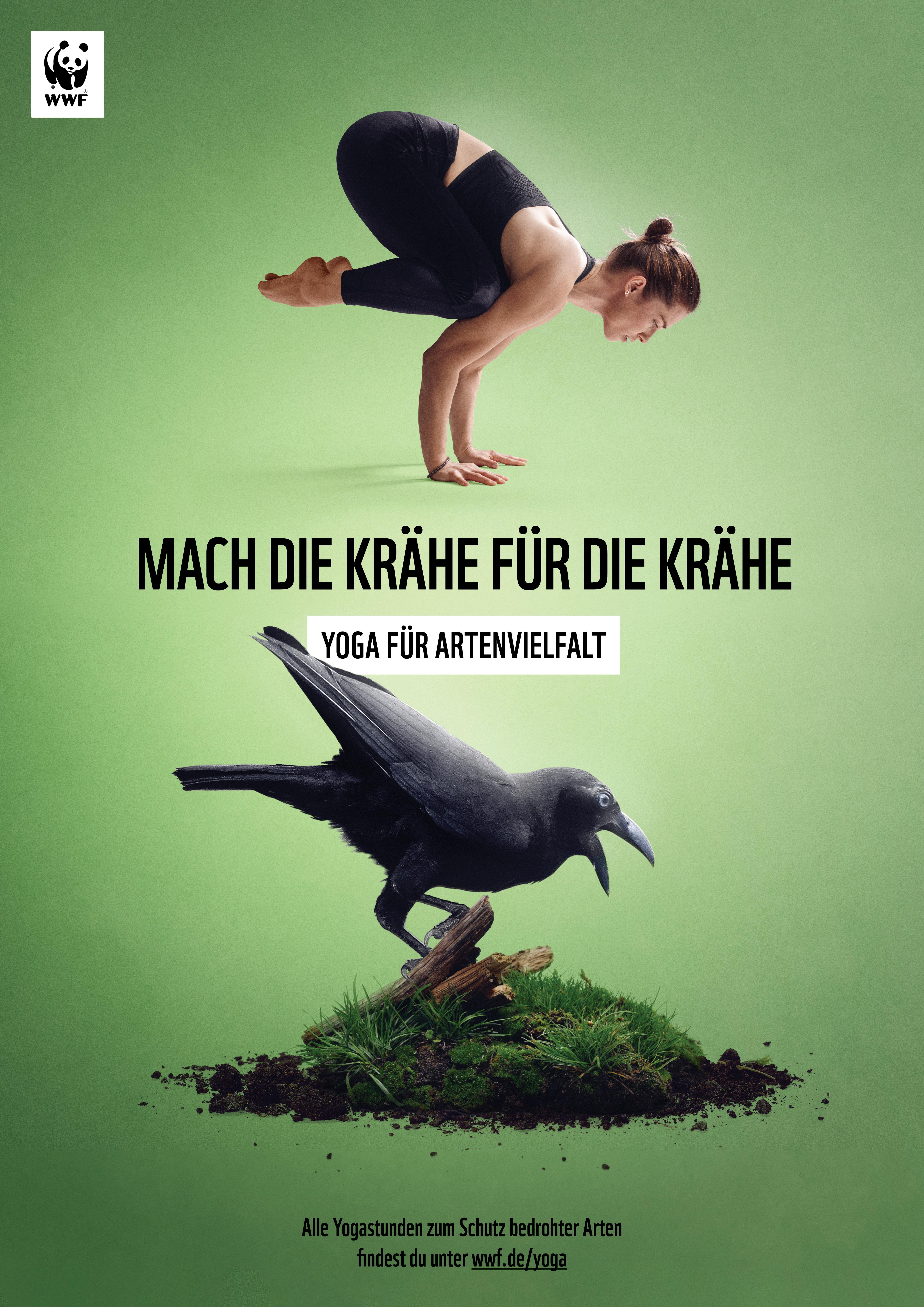 WWF Yoga für Artenvielfalt Banggai Krähe